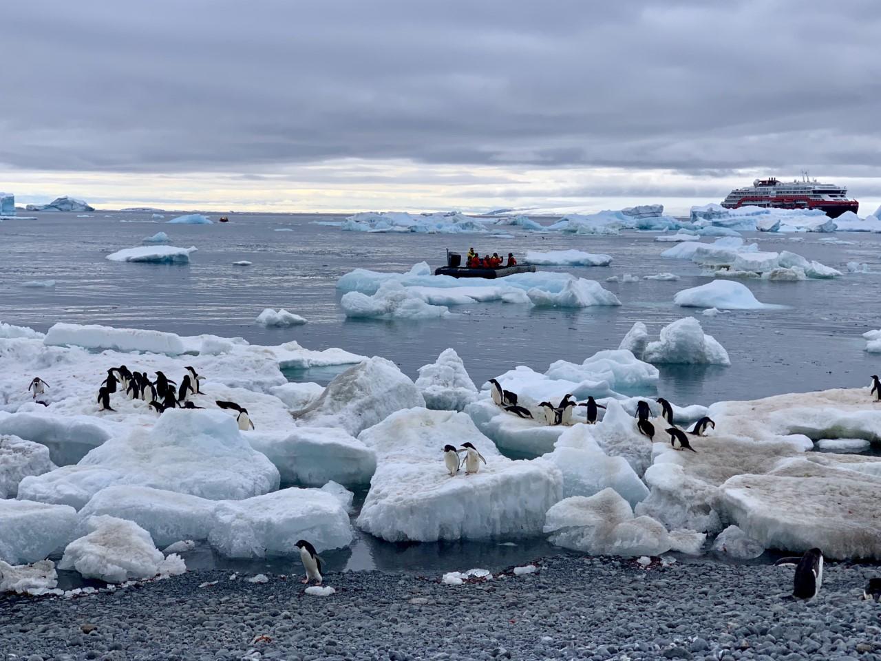 Ihmeellinen_Antarktis1